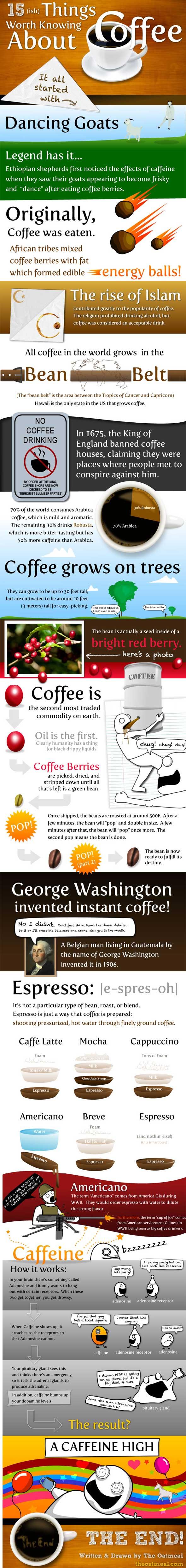 커피에 관하여